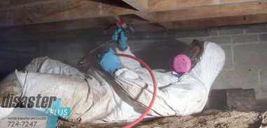 Mold Remediation in crawlspace - DisasterPlus247com