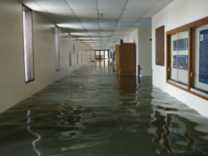 Repair Flood Damage